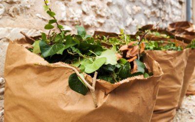 Collecte EXCEPTIONNELLE des déchets verts en point d'apport volontaire.