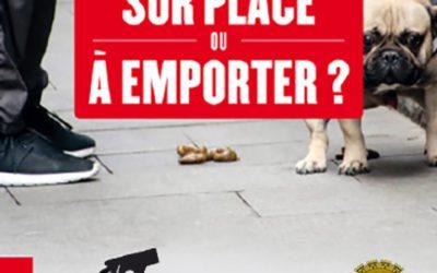 Mon chien à Genay : le bon geste face aux déjections canines