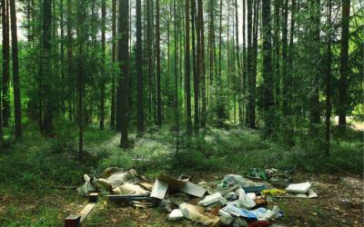Dépôts sauvage : comprendre et lutter contre le phénomène